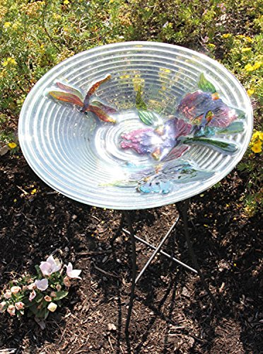 CC Outdoor Living Hand Painted Glass Dragonfly and Flower Spring Outdoor Garden Bird Bath, 21'', Off/White by CC Outdoor Living