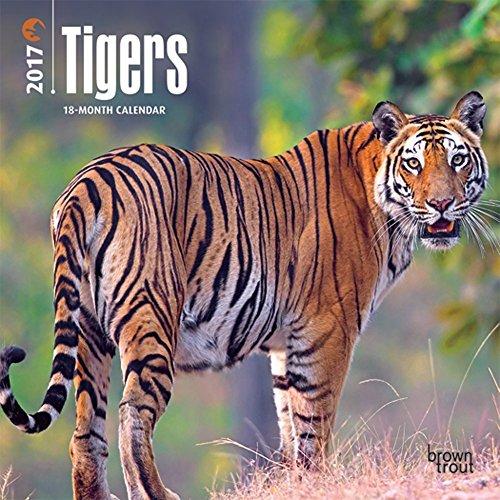 """Tigers 2017 Mini Calendar 7"""" x 7"""""""