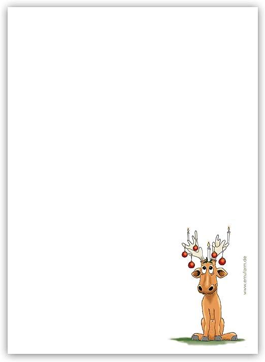 10 5 simpatici biglietti di Natale Alce R/üdiger DIN A6 cartoline per Natale