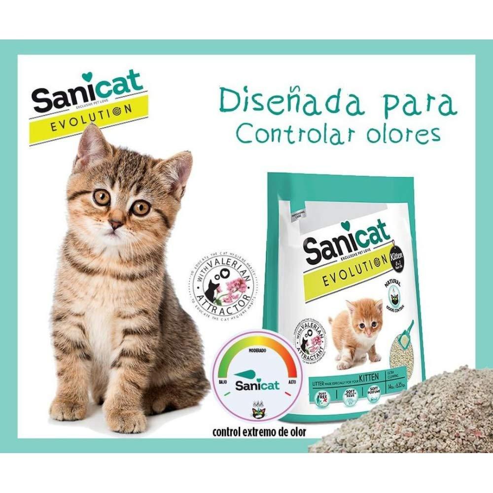 SANICAT Evolution Kitten, Arena de Gato Aglomerante - 6L: Amazon.es: Productos para mascotas