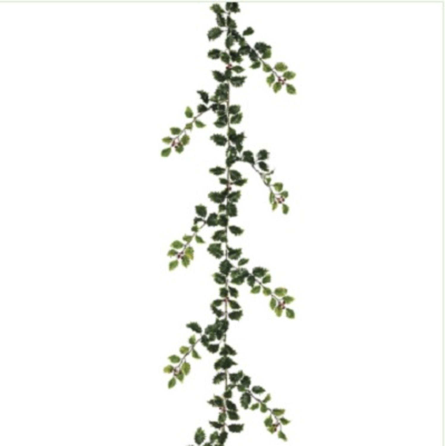 Allstate 6' Green Holly and Red Berry Artificial Christmas Garland Decoration - Unlit