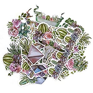 Navy Peony Geometric Terrarium Cactus and Succulent Stickers | Cool Decals for Laptops and Water Bottles and Phone Cases | Sticker Packs for Your Scrapbook, Planners and Bullet Journals (15 pieces) 59