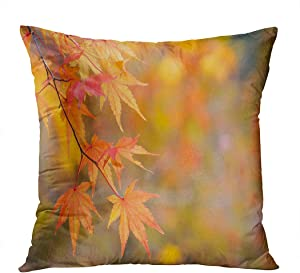 Llsty Throw Pillow Cover Polyester Print Japanese Maple Acer Palmatum Turning Color Tree Autumn Orange Blur Soft Square for Couch Sofa Bedroom Pillowcase Home Style Cushion Case 18 x 18 Inch