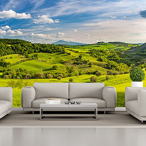 azutura Tuscan Countryside Wall Mural Green Landscape Photo Wallpaper Nature Home Decor Available in 8 Sizes Gigantic Digital