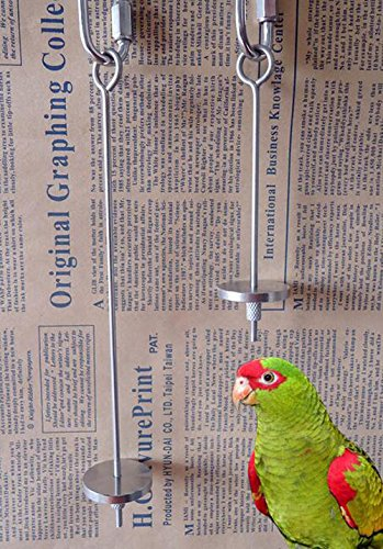Qin 4.8inch Stainless Steel Small Parrot Toy Meat Kabob Food Holder Stick Fruit Small Animal Skewer Bird Treating Tool Durable Bird's cage Accessories