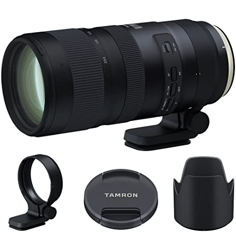Amazon.com : Tamron SP 70-200mm F/2.8 Di VC USD G2 Lens (A025) for ...