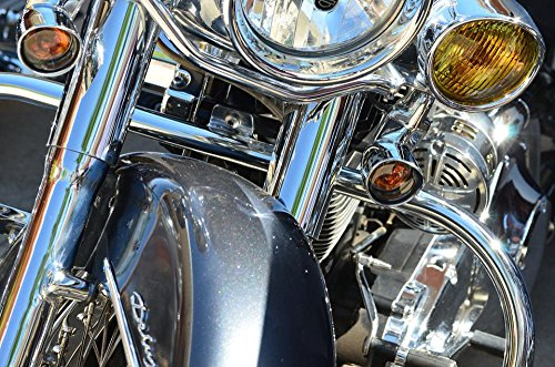 LAMINATED 36x24 inches Poster: Chrome Harley Davidson Davids