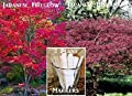 2 Pack Maple Tree Seeds 130 Seeds Upc 650327337893 +3 Plant Markers Fireglow Maple Bloodgood Maple