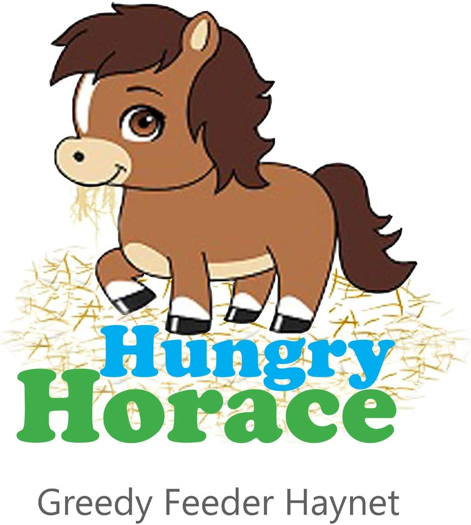 Rhinegold Hungry Horace Mangeoire Gourmand Turquoise 90 cm