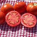 Tomato Garden Seeds - Beefsteak (Ponderosa Red) - Non-GMO, Organic Vegetable Gardening Seed