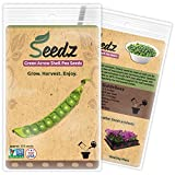 CERTIFIED ORGANIC SEEDS (Approx. 125) - Garden Pea Seeds - Heirloom Green Pea Seeds - Non GMO, Non Hybrid - USA