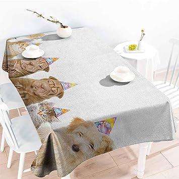 Amazon.com: Familytaste - Mantel de cumpleaños para niños ...
