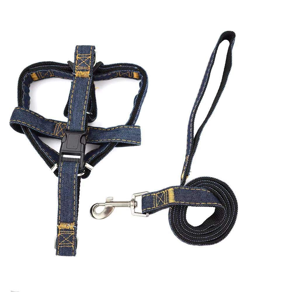 Great step in harness for walking dog
