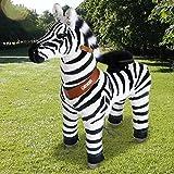 Pony Cycle Riding Zebra Med Horse