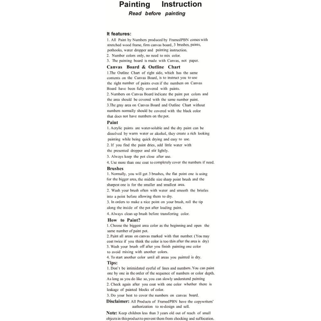 A0127 Peinture /à lhuile de Bricolage D/écoration de Peinture /à lhuile Set de Peinture num/érique Peinture sur Toile Caf/é de Mouette Peinture au Pinceau sans Cadre Oeuvre dart D/ébutant