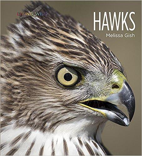 Living Wild: Hawks