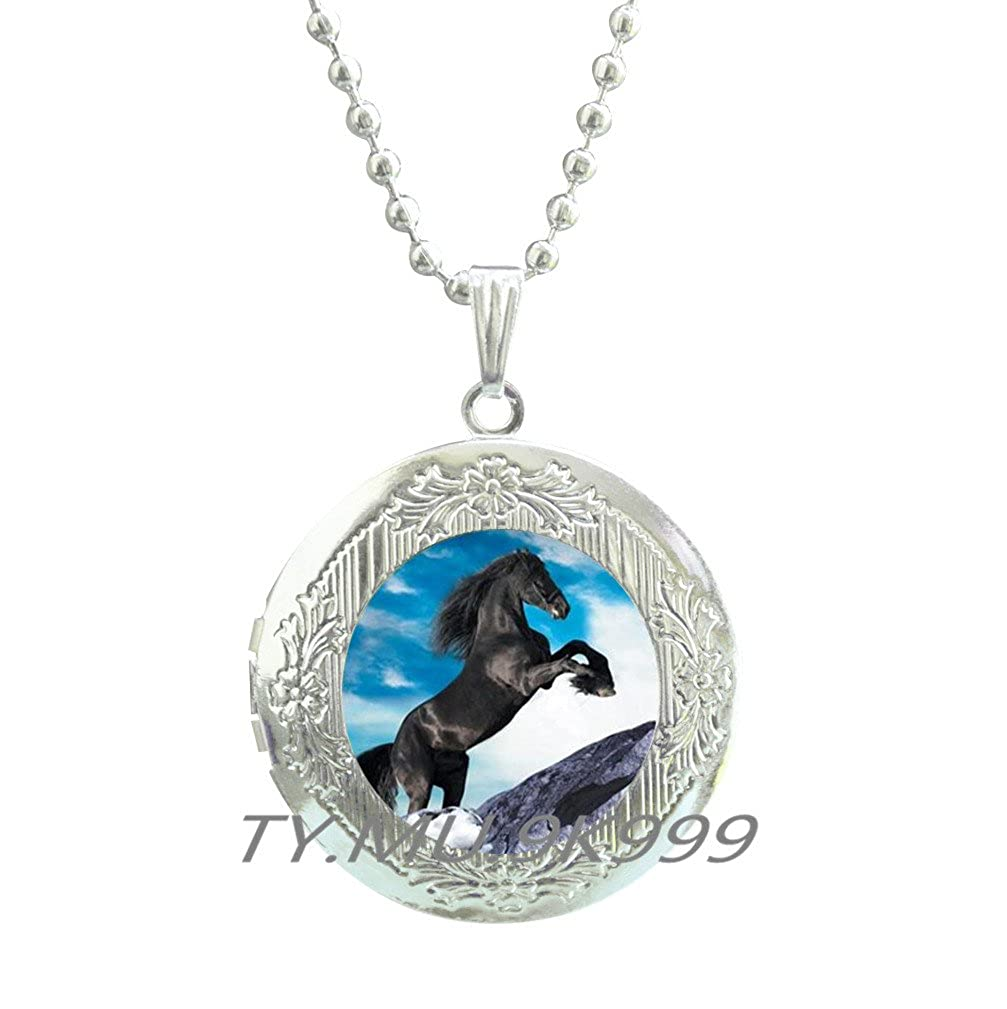 Yao0dianxku Unique Unicorn Picture Locket Necklace Glass Cabochon Horse Locket Pendant Animal Handmade Color Chain Locket Necklace Jewelry.Y019