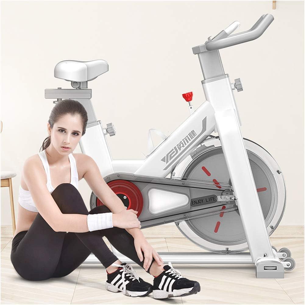 TXDWYF Bicicletas Estáticas y de Spinning para Fitness/Bicicleta Fitness de Gimnasio Ejercicio/Bicicleta Estática/Unisex Adult/Ajustable Resistencia/Volante de Inercia: Amazon.es: Hogar