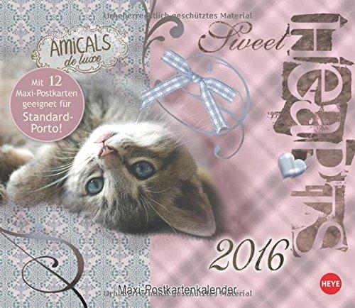 Sweetheart Katzen Maxi-Postkartenkalender 2016