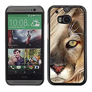 Qstar Arte & diseño plástico duro Fundas Cover Cubre Hard Case Cover para HTC One M8 ( Mane Lion Cub Feline Big Cat Nature)