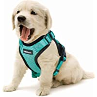 Small Dog Harness, Small Cat Harness Escape Proof Vest Harness Adjustable Puppy Kitten Walking Harness No Pull Design with Leash Clip & Reflective Strips for Best Comfort & Safety, Green