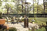AZ Patio Heaters HLDS01-WCGT Tall Patio Heater with Table, 87-Inch, Hammered Bronze