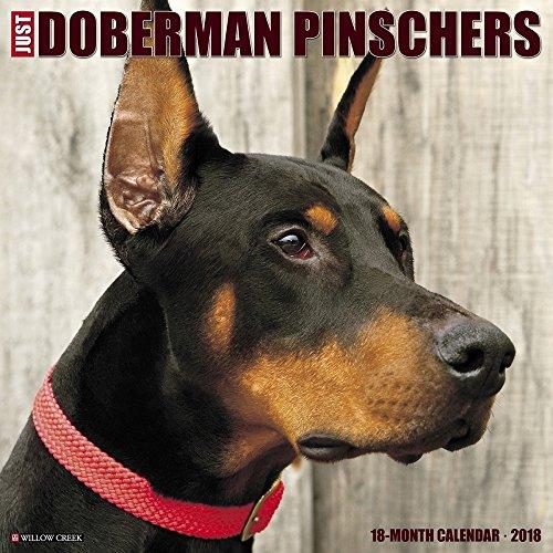 Doberman Pinschers 2018 Wall Calendar
