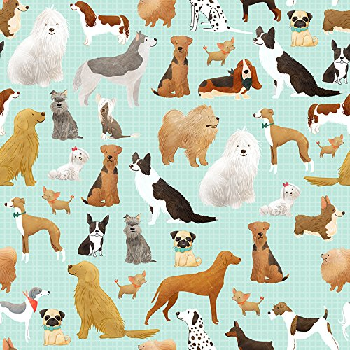 "Best in The Show Dog Gift Wrap Flat Sheet - 24"" x 6'"