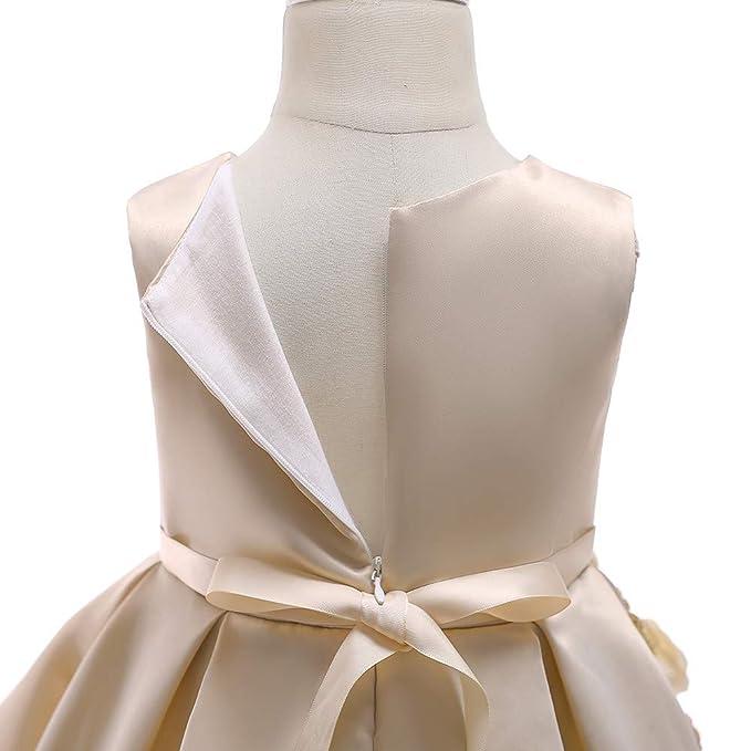 Vestido Niña, LANSKIRT Niña Floral Sin Mangas Princesa Dama de Donor Vestido del Desfile Fiesta de Cumpleaños Vestido de Novia Falda del Vestido: Amazon.es: ...