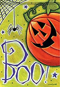 Boo Pumpkin Spider Halloween Flag 2 d Message Designed by Yerkes
