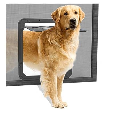 FISOUL Puerta de Cierre automático para Mascotas, Perros ...