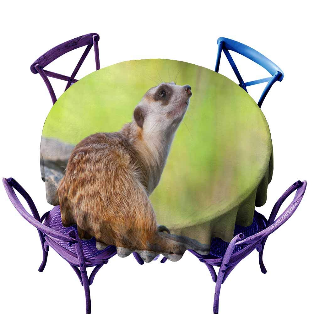 color08 63  Round(160CM) AndyTours Fashions Table Cloth,Meerkat or Suricate1,High-end Durable Creative Home,70 INCH