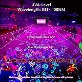 10W UV LED Black Lights, UV Led Flood Light Bulb