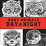 img - for Baby Animals Day & Night book / textbook / text book
