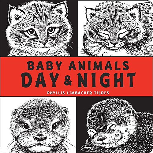 Baby Animals Day & Night