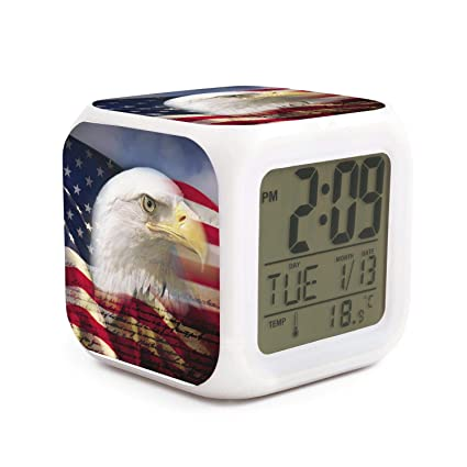 Amazon.com: PZX1586 American Bald Eagle Flag US Constitution ...