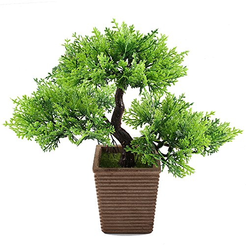 Evergreen Table (GTIDEA 10.6 inch Artificial Cedar Bonsai Trees Fake Potted Plants indoor Evergreen Home Office Table Feng Shui Greenery Decor)