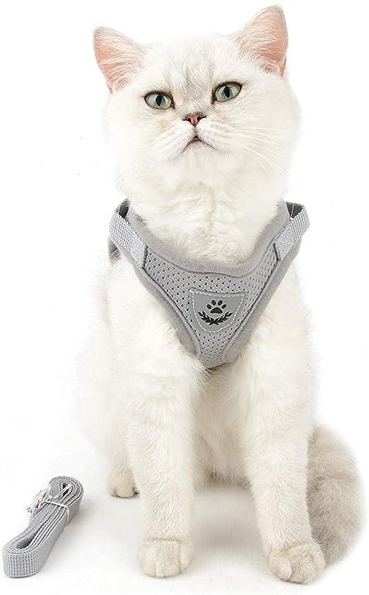 NEEZ - Arnés para gatos con correa larga, para gatos pequeños y grandes, así como para perros pequeños y cachorros, arnés ajustable para gatos: Amazon.es: Productos para mascotas