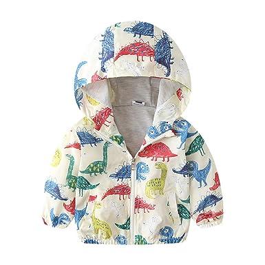 70e36968d Amazon.com  Dealone Baby Boys Autumn Long Sleeve Dinosaur Hoodie ...