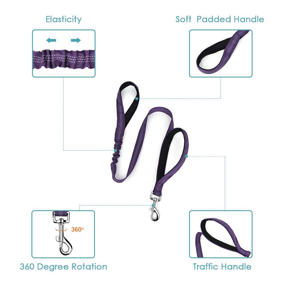 Lukovee Doppel-Hunde-Sicherheitsgurt-Leine Set abnehmbare Doppel-Autositzgurt elastisch reflektierende Streifen verstellbar Haustierleine f/ür Zwei Hunde