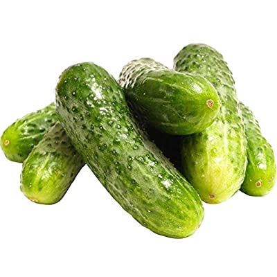 MABES WAREHOUSE Organic Boston Pickling Cucumber 20 Seeds - Cucumis Sativus, Best for Pickles Vegetable Seeds, Organic Cucumber Seeds for Planting, Vegetable Seeds for Planting Home Garden : Garden & Outdoor