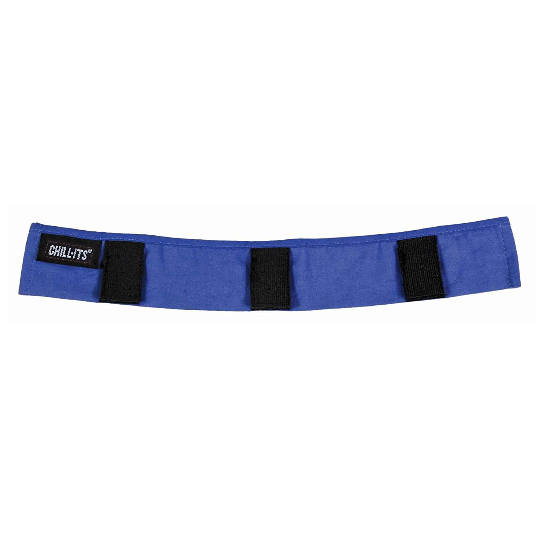 Ergodyne Chill-Its 6716 Evaporative Polymer Cooling Interior Hard Hat Liner, Solid Blue