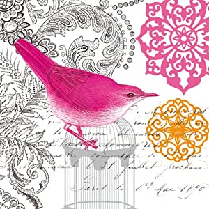 Paperproducts Design 1251178 20-Pack Beverage Cocktail Napkin, 5 by 5-Inch, Toulon Vintage Bird and Birdcage