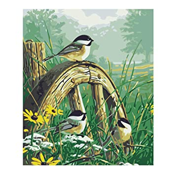 Amazon Com Dfsdmlp Bird Oil Painting Diy Digital Oil Painting