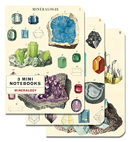 Cavallini Papers & Co., Inc. Mineralogy Mini Notebooks 4 x -