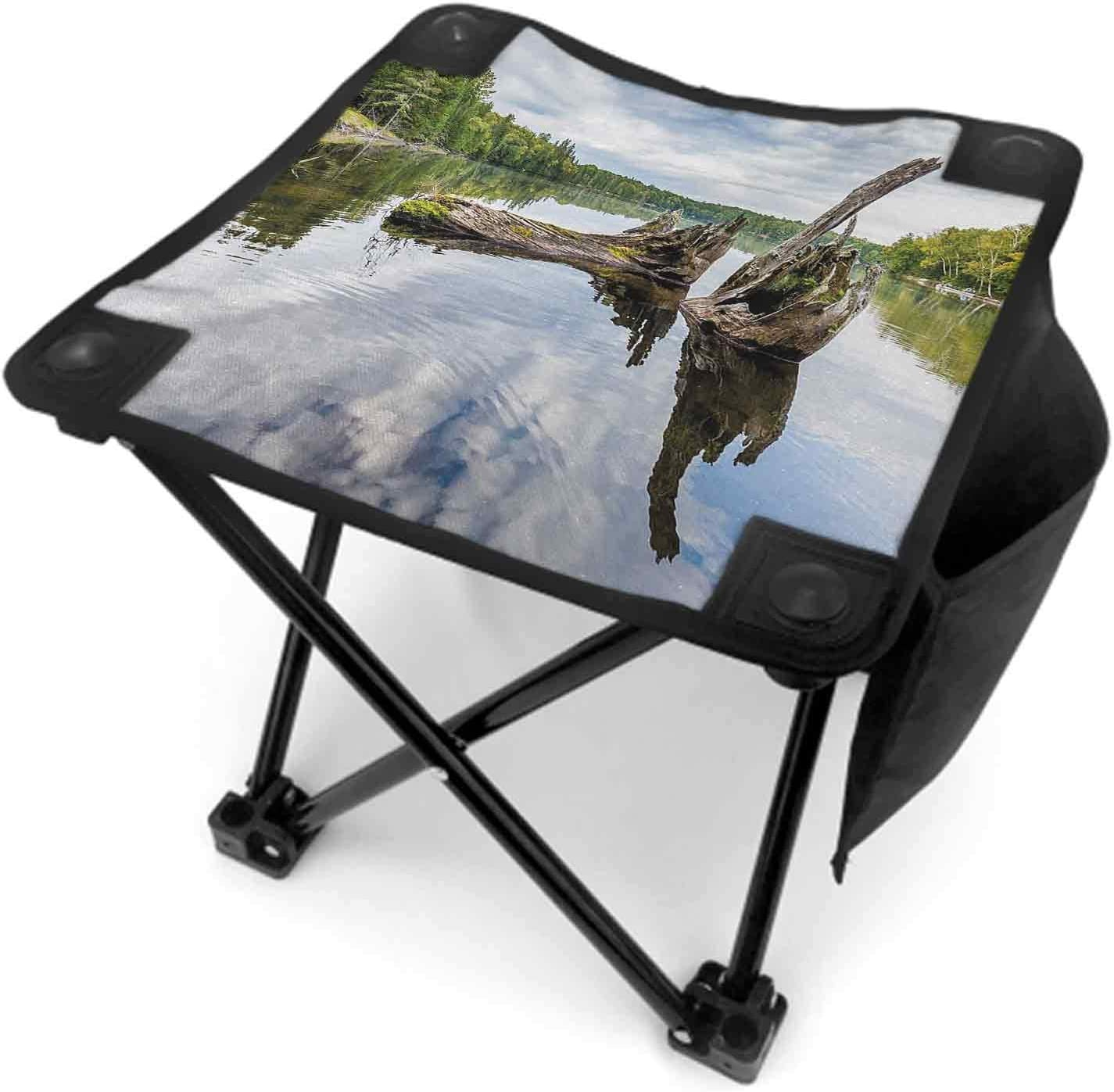 Driftwood Folding Stool with Carry Bag, Remains of a White Cedar Tree Trunk in The Lake and The Sky Digital Image Lightweight Sturdy Stool Green Pale Grey