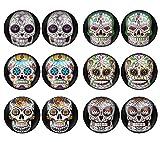LilMents 6 Pairs Sugar Skull Black Pattern Mens Womens Stainless Steel Stud Earrings Set (Set A)
