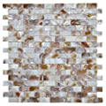 "Art3d Mother of Pearl Wall Brick Shell Mosaic for Kitchen Backsplashes, Bathroom Walls, Spa Tile, Pool Tile, 12"" x 12"" Natural Color from Art3d"