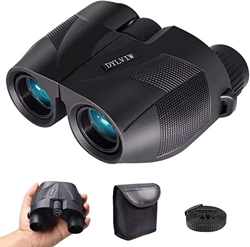 10 x 25 Fantastic Binoculars for Bird Watching Traveling Outdoor Sightseeing Durable Compact Portable Adjustable Long Eye Relief Design Provides Comfortable Experience