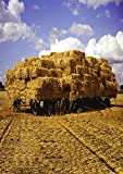 AOFOTO 3x5ft Haystack Backdrops Flat-car Straw Hay Photo Shoot Background Blue Sky Clouds Farmland Rural Scenic Photography Studio Props Child Kid Artistic Portrait Countryside Digital Video Drop